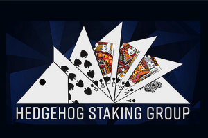 'We focus on each player individually' – INTERVIEW WITH HEDGEHOGSTAKING